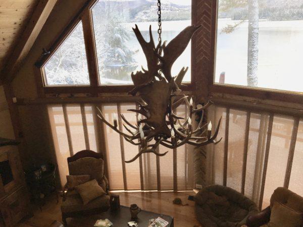 Moose/elk chandelier