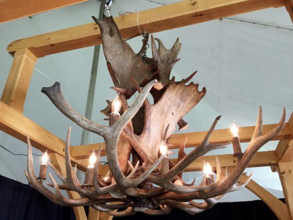 Moose elk combination chandelier