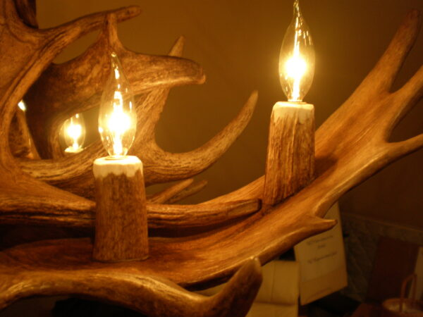 moose chandelier lights