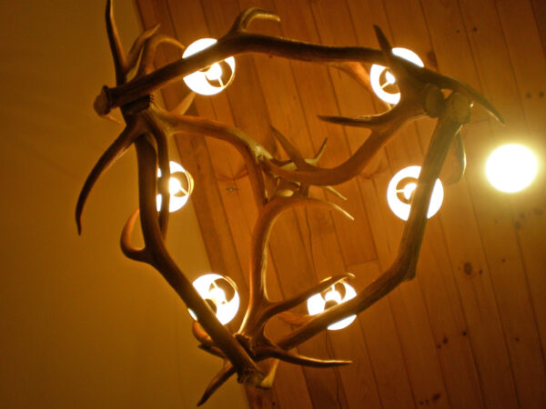 oval elk chandelier bottom