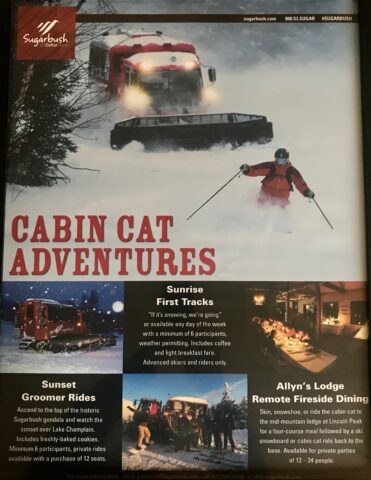Allyns Lodge Cabin cat flyer
